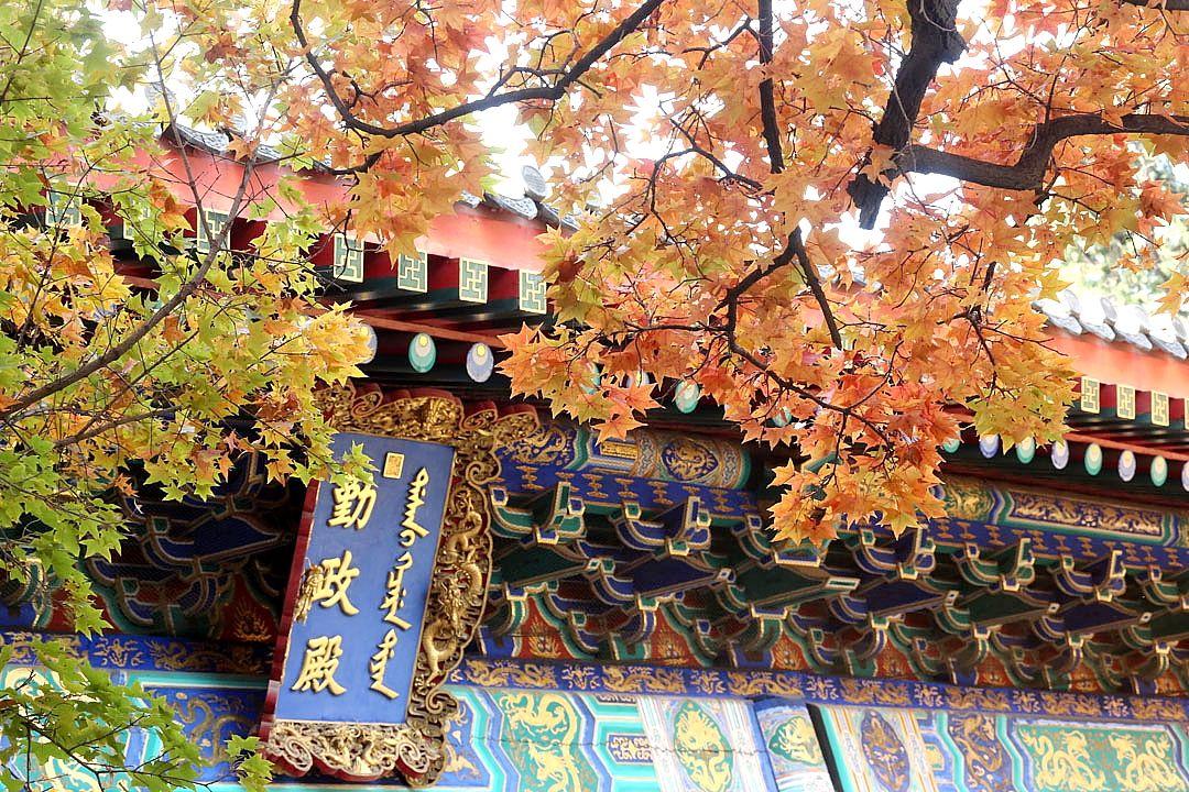 【北京奢华五天游】 天安门广场、毛主席纪念堂、人民大会堂、故宫、八达岭长城、奥林匹克公园、鸟巢水立方外观双飞五日游